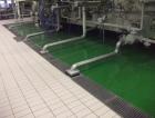 Heinekken-20.jpg